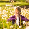 Complexe Pollens